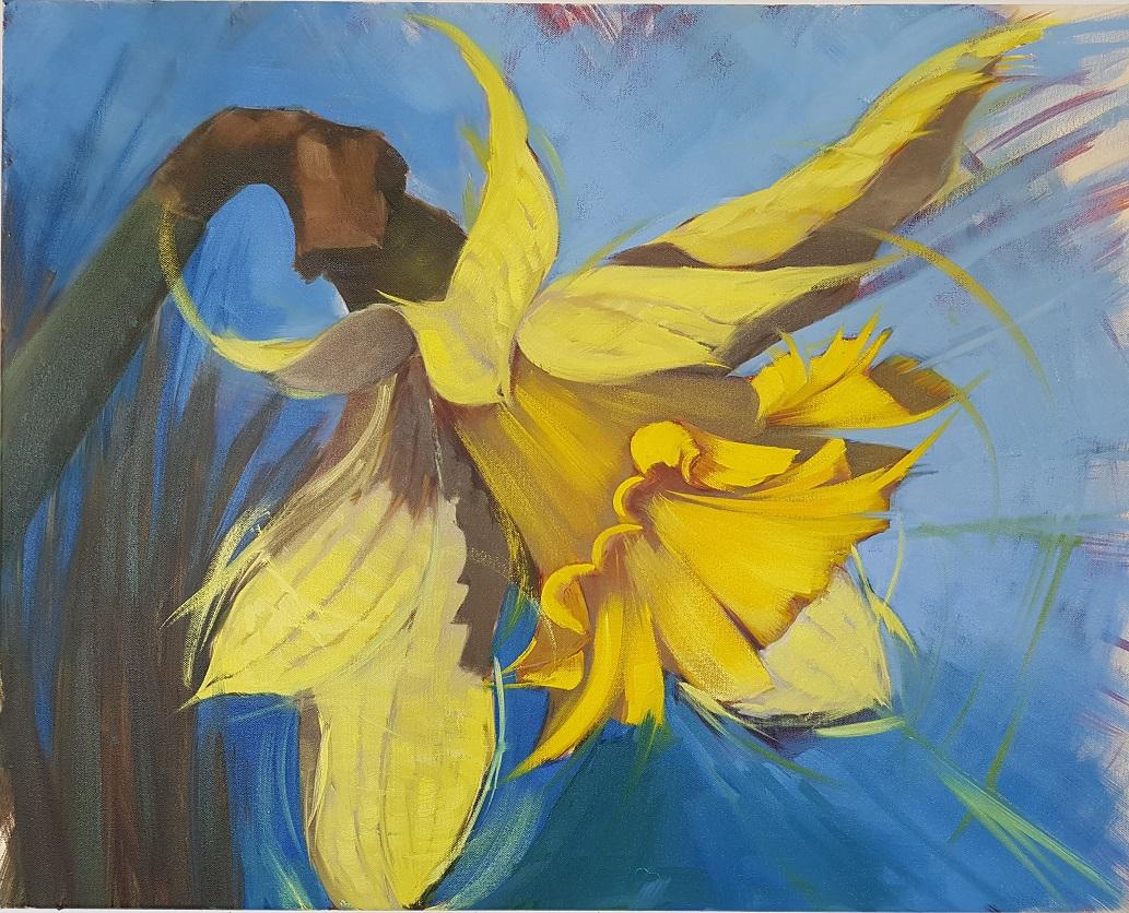 Daffodil facing right