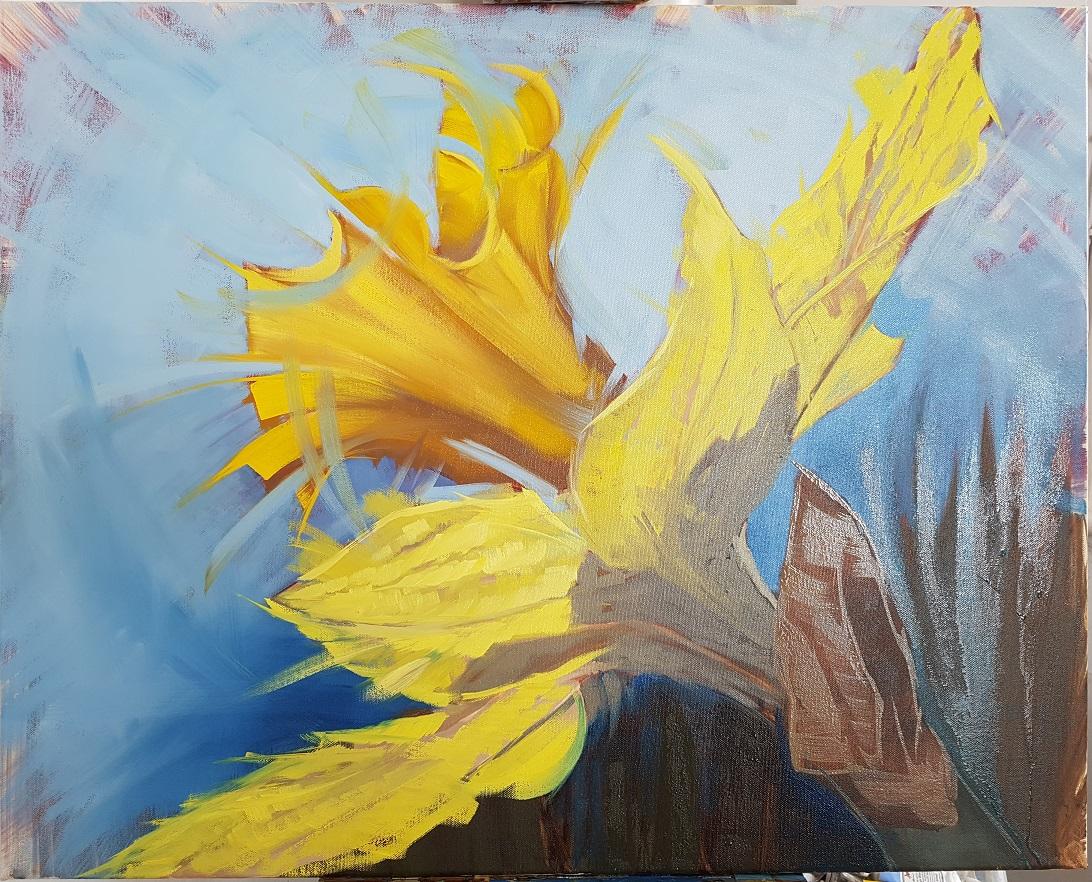 Daffodil head in spring